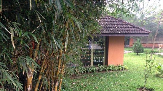 ABAD Green Forest Resort : Cottages