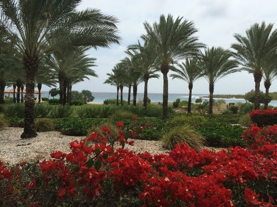 Santa Barbara Beach & Golf Resort, Curacao: View from Medi