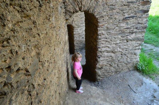 Burg Rheinfels Picture
