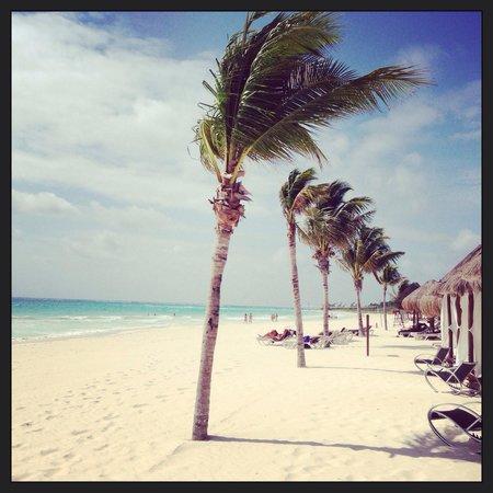Secrets Maroma Beach Riviera Cancun: Secrets Maroma Riviera Cancun
