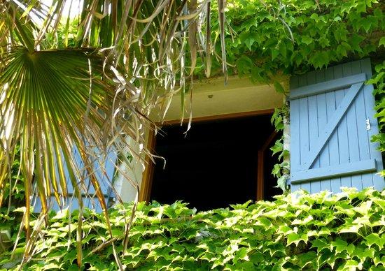 Le Mas des Vergers: Our room window