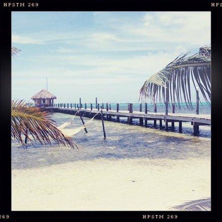 Portofino Beach Resort: View From Reception