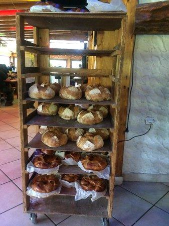 La Terrine : pain et brioche
