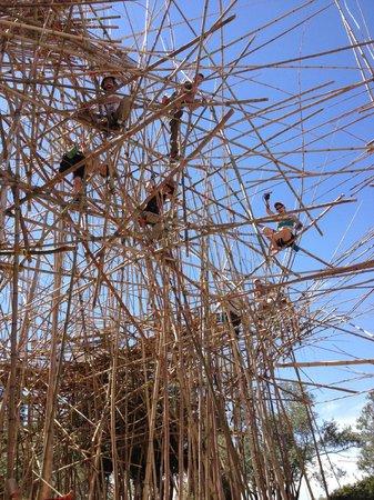 Musée d'Israël : A current installation: the Big Bambú