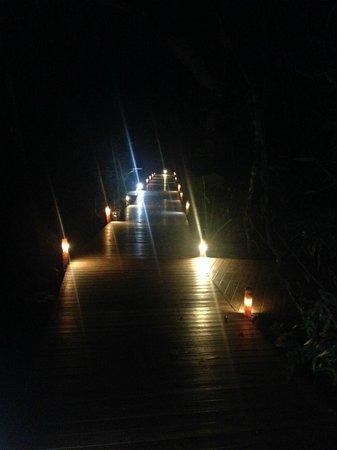 Tierra Guarani Lodge: ロッジへの遊歩道