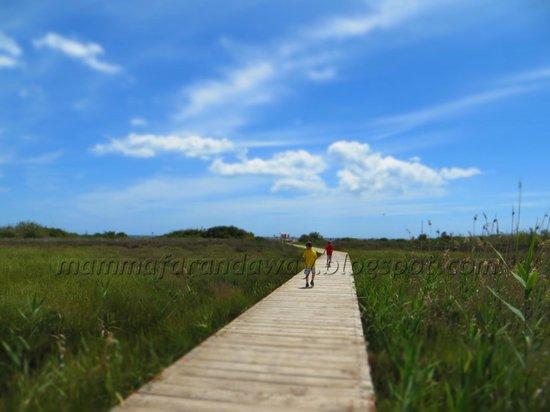 Oasi Faunistica di Vendicari : Riserva naturale di Vendicari