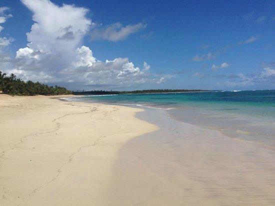 Zoetry Agua Punta Cana: Beach