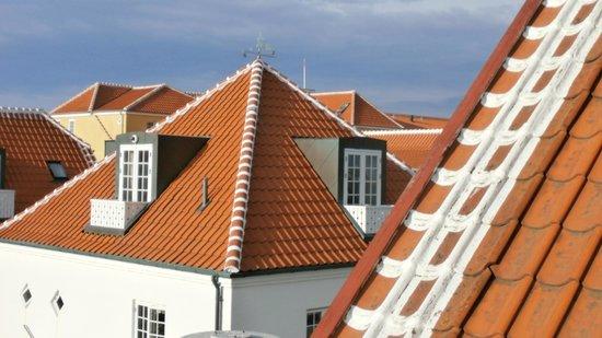 Ruths Hotel: Roofs og Skagen