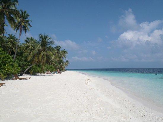 Filitheyo Island Resort : Filitheyo  - plage vers les n°60 en mai