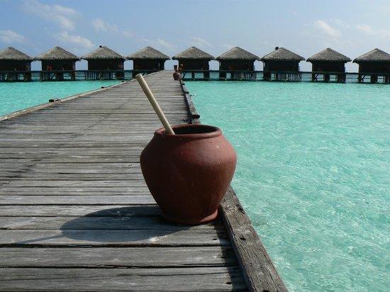 Filitheyo Island Resort : Filitheyo  - accès aux pilotis