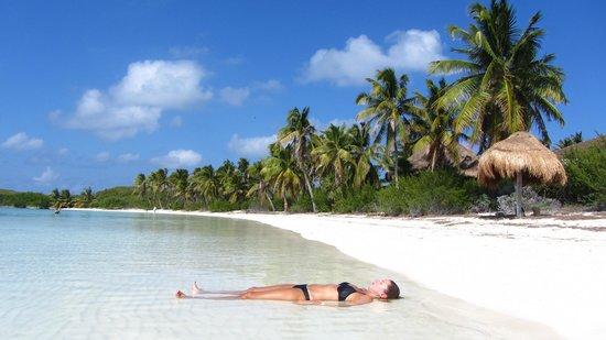 Contoy Adventures : Relax en Isla Contoy