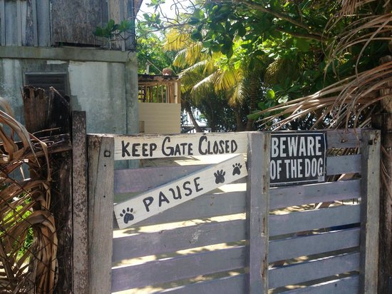 PAUSE Hostel : Entrance to PAWS