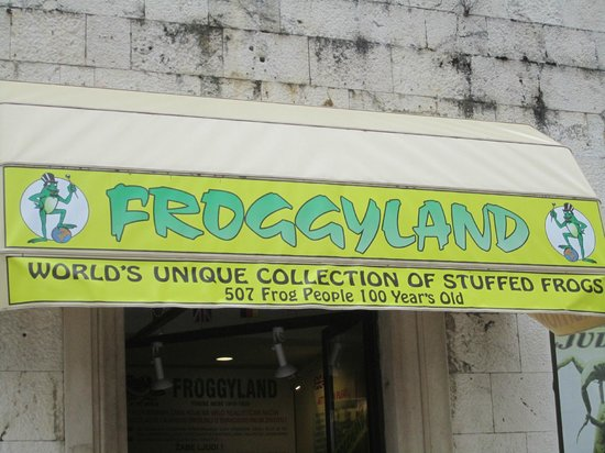 Froggyland: The exterior