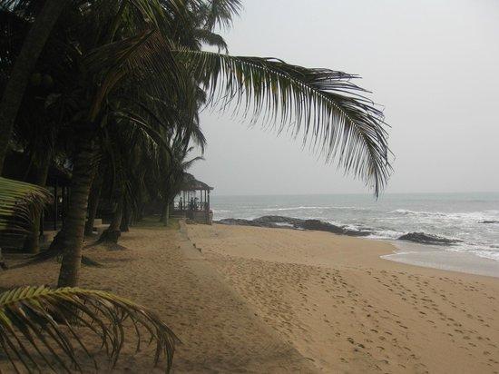 Coconut Grove Beach Resort: Strand