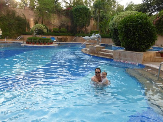 Sheraton New Delhi: Hotel Pool