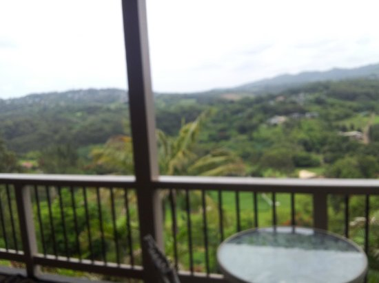 Marjorie's Kauai Inn: The lanai view