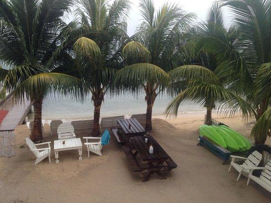 Pirate's Bay Inn Dive Resort: Beach view