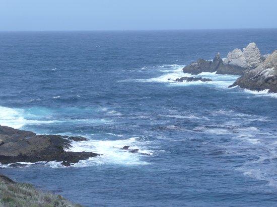 Hyatt Carmel Highlands: Ocean View