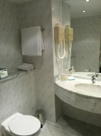 Millennium & Copthorne Hotels at Chelsea Football Club: Shower/Toilet