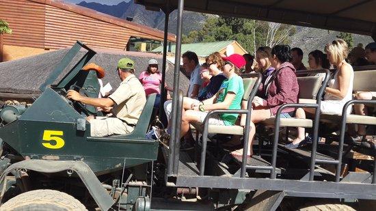 Fairy Glen Private Game Reserve: 8