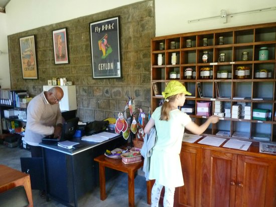 Amba Estate Farmstay: Amba Tea and Farm Store
