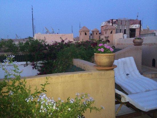 Riad Alma: The roof terrace view