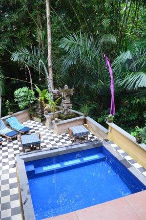 Bembengan Ubud Cottage : Pool area