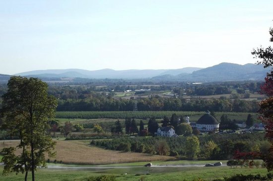 Hauser Estate Winery: The VIEW!