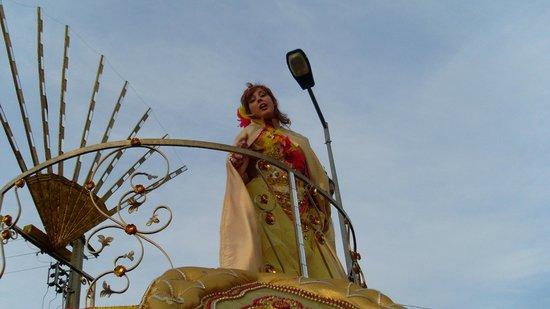 Rei dos Leitoes: Micaela no carnaval da Mealhada