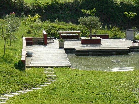 Mas Laurent : Vue de la cours, le plan d'eau (au loin)