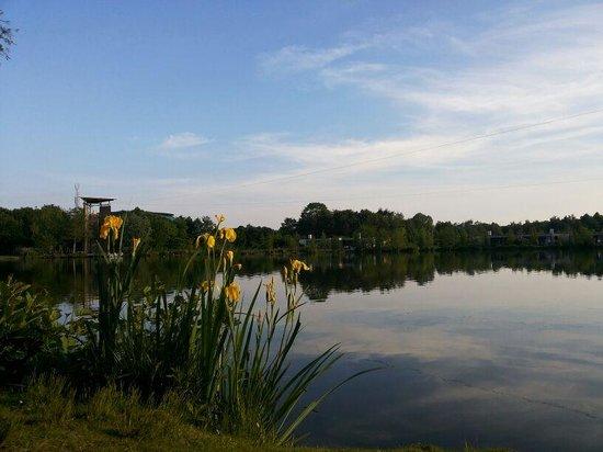 Center Parcs Het Heijderbos: At the lake
