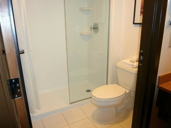 Hotel Indigo Chicago - Vernon Hills: Half glass/ half curtain bathroom