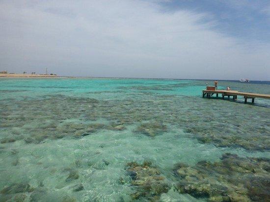 Sheraton Soma Bay Resort: Steg zum Hausriff
