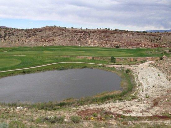 Grand Junction, Colorado: Lots of water