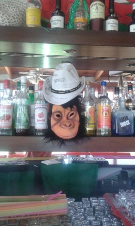 Hotel Karras: Our little zante family monkey mask