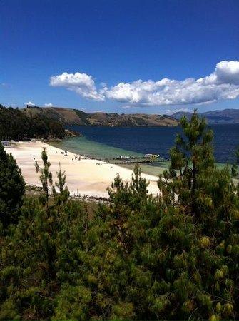 Cabaña Buenavista lago de Tota: Playa Blanca Laguna de Tota