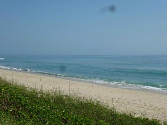 Seashell Suites Resort : Beach
