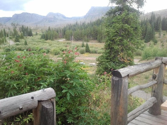 Trappers Lake Lodge & Resort: View from cabin front porch