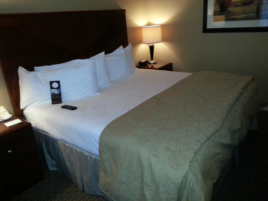 Omni Houston Hotel Westside : Firm comfy bed
