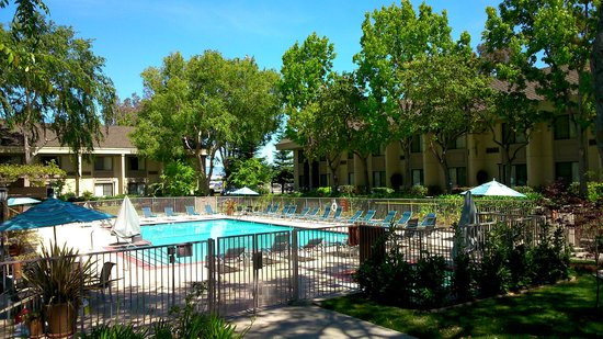 Sheraton Sunnyvale: Piscina do hotel