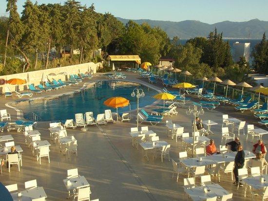 Arora Hotel: Piscine et abords