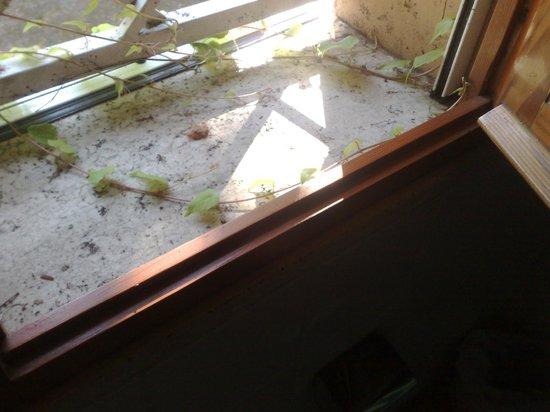 Hotel Giardino d'Europa: il davanzale del bagno