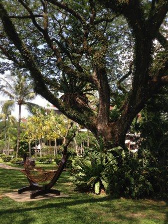 Shangri-La's Rasa Sayang Resort & Spa : Relaxing in the Rasa garden