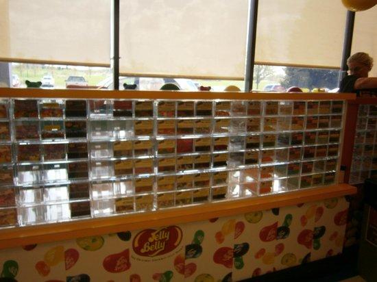 Jelly Belly Center: Sampling Station