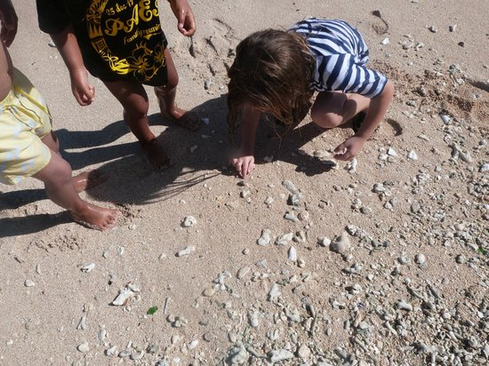 Ha'atafu Beach Resort: Kids Catching Crabs