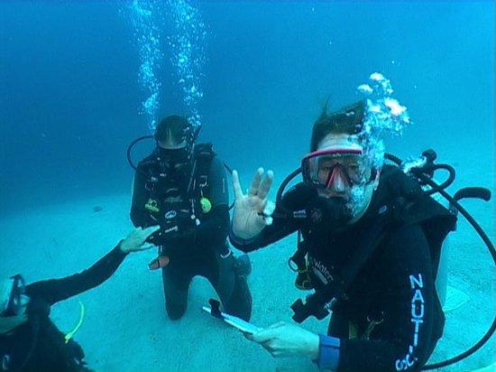 Nautilus Scuba: Dive Course