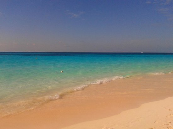 Playa Paraiso: Syrena