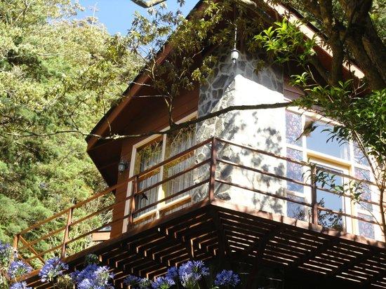 Los Pinos - Cabanas y Jardines: Superior Cabin #16