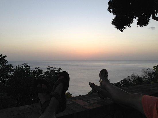 Sunset under the mango tree