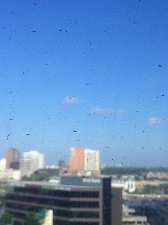 Hotel Derek Houston Galleria: Window.